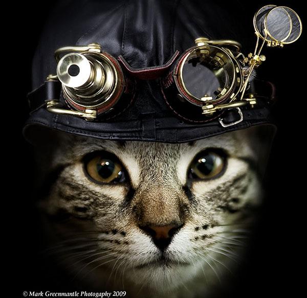Un chat qui porte des goggles steampunk